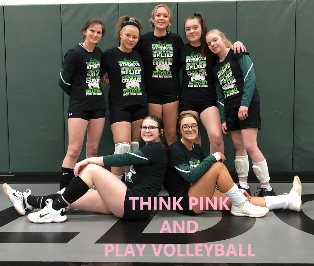 THINK PINK and PLAY VOLLEYBALL