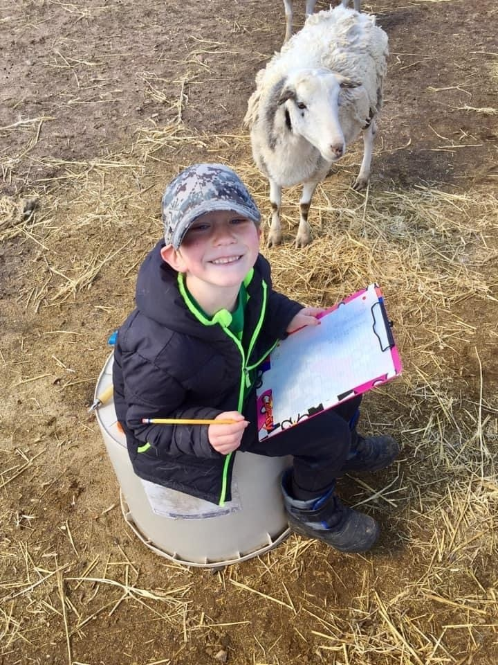 Emmett practiced his numbers and handwriting this morning by being our record keeper while we vaccinated our ewes! He also helps with chicken chores!