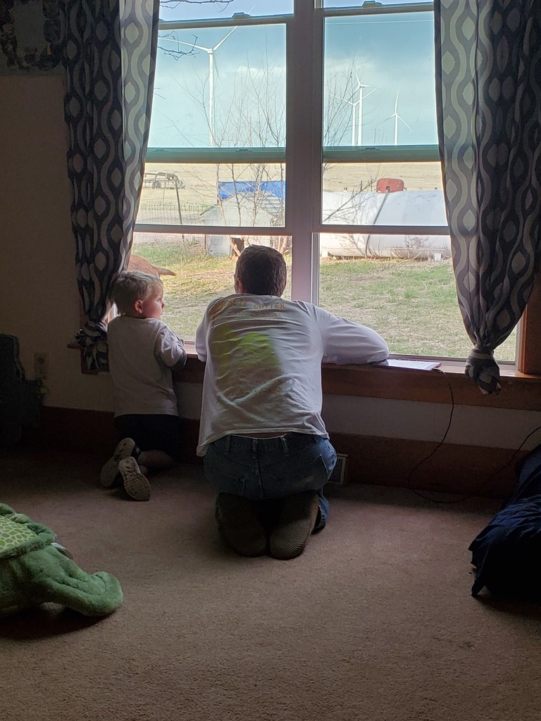 Father and son looking out the window